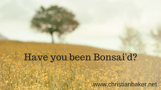 Have you been Bonsai'd-